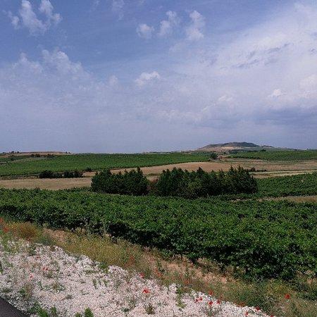 Roa, Espagne: IMG_20180711_125518_157_large.jpg