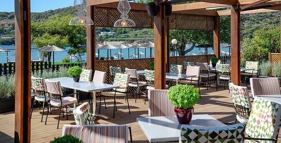 Vravrona, Greece: Ammos Tavern