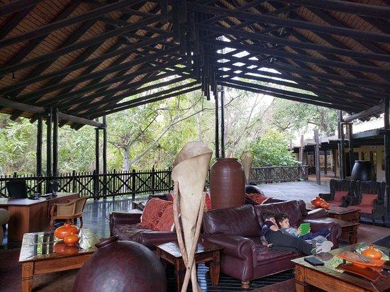 Skukuza, South Africa: TA_IMG_20180712_113733_large.jpg