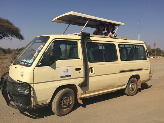 Amboseli National Park, Kenia: Safari on one of Aardwolf safaris mini van.