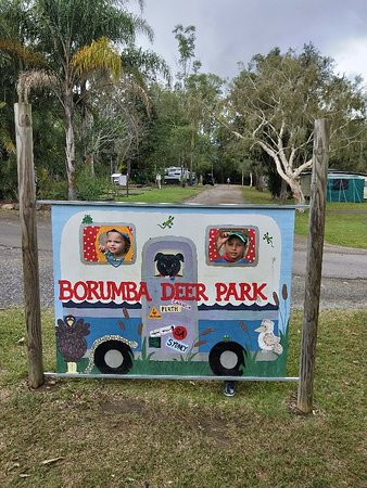 Imbil, Αυστραλία: IMG20180705142449_large.jpg
