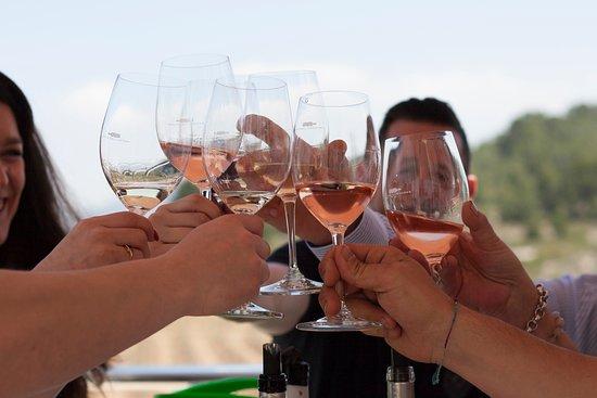 Pinoso, Испания: Disfruta de una cata entre amigos en un entorno natural rodeado de viñedos.