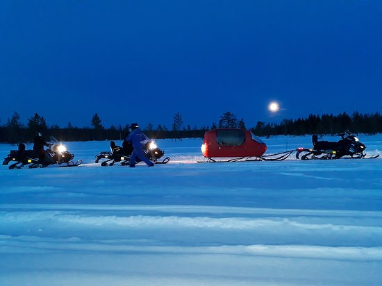 Sinetta, Finland: Night Safari