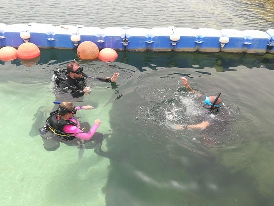 Ghantoot, United Arab Emirates: Panicked Diver - PADI Rescue Diver Course