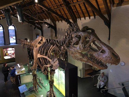 Australian Fossil and Mineral Museum صورة فوتوغرافية