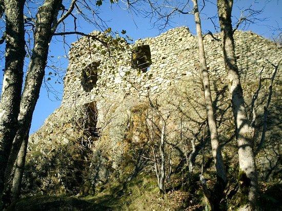 Chateau de Freundstein