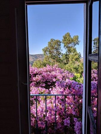 Hotel Finca el Cerrillo: IMG_20180709_092753_large.jpg