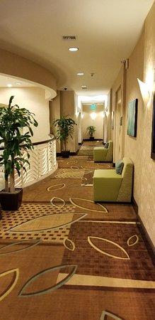 Hampton Inn & Suites Ft. Lauderdale Airport/South Cruise Port: 20180701_065039_large.jpg