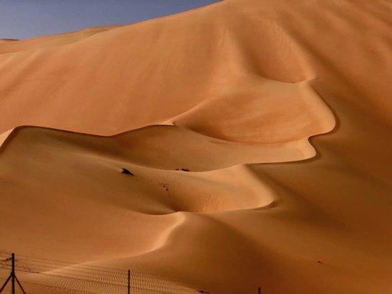 Beautiful desert in Liwa oasis