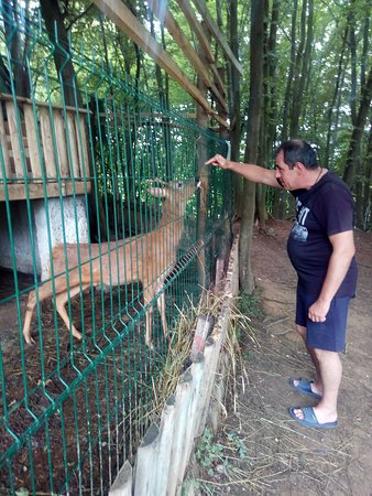 Loznica, Serbia: mini zoo vrt
