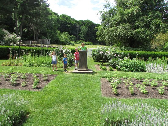 Farmington, CT: Children enjoying the garden