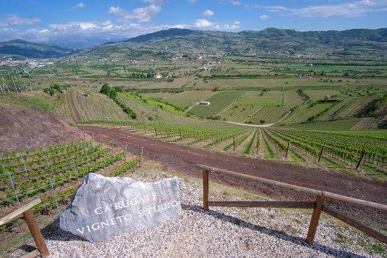 Monteforte d'Alpone, Olaszország: getlstd_property_photo