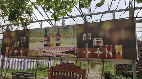 Battambang, Kambodsja: Cambodia's only Winery
