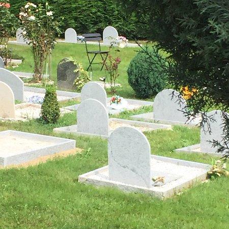 Cimitero Per Animali Di Frassino -CN-