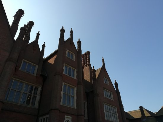Dunston Hall: Looking up