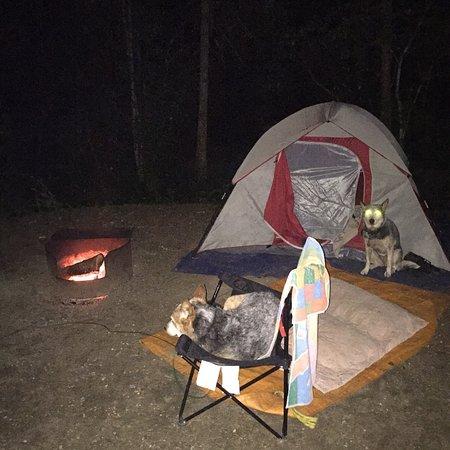 Kokanee Creek Provincial Park照片