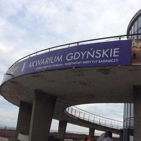 Photo0jpg Picture Of Akwarium Gdynskie Mir Gdynia Tripadvisor