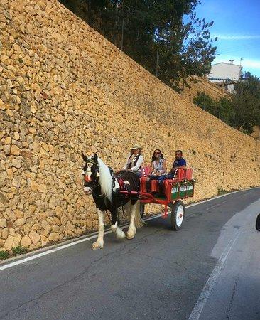 Polop, España: getlstd_property_photo