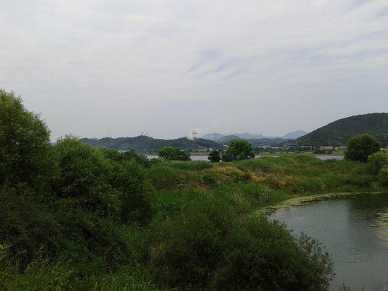 Chilgok-gun, Южная Корея: Les hélicoptères font des rotations pour éteindre l'incendie