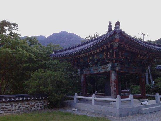 Yeongdong-gun Restaurants