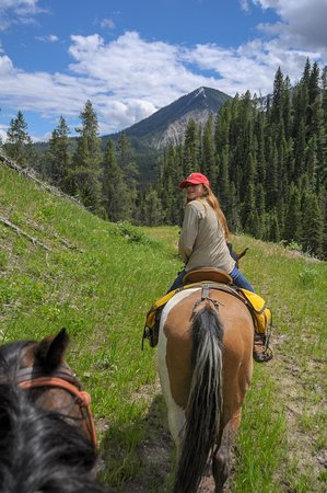 Alpine, WY: Gorgeous scenery