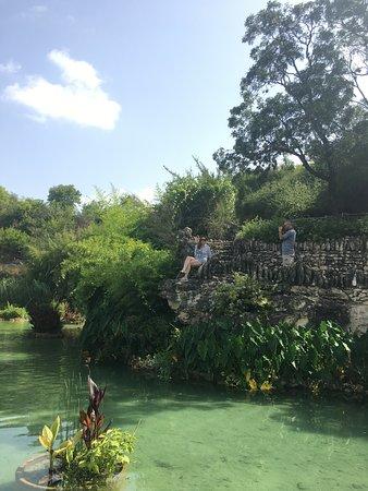 Japanese Tea Gardens (San Antonio) - 2018 Reviews: All You Need to ...