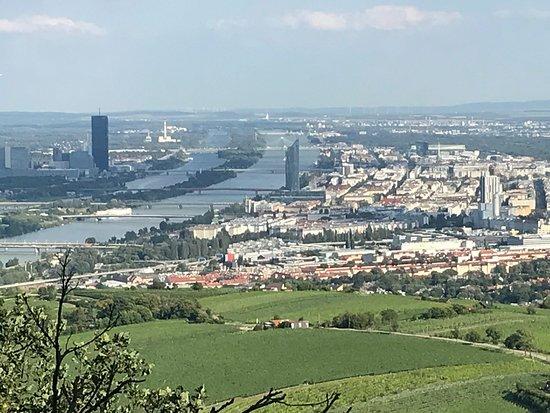 Fantastische Aussicht Picture Of Kahlenberg Vienna Tripadvisor