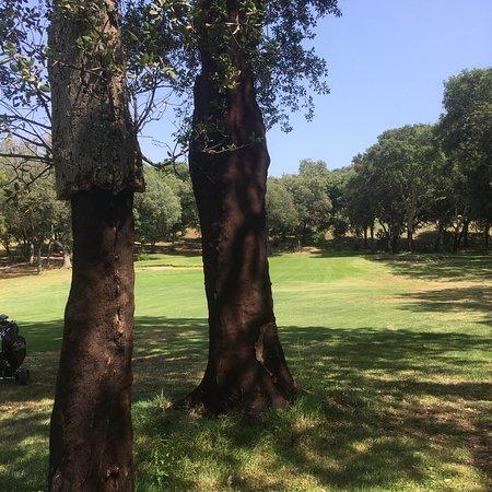 Golf Club Punta Ala: photo1.jpg