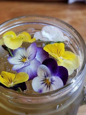 Cafe Astoria: Viola tea