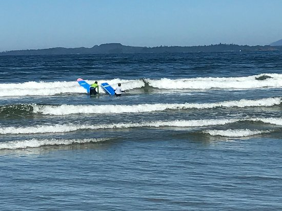 61e83a8252 Long Beach Surf Shop (Ucluelet) | All You Need to Know BEFORE You Go |  Trusted Reviews | Updated 2019 (Ucluelet, British Columbia) | TripAdvisor