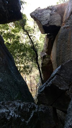 ‪‪Cania Gorge National Park‬, אוסטרליה: IMAG2897_large.jpg‬