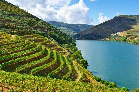 ドウロヴァレーワインプライベートツアー(ポルトからのワイン試飲)