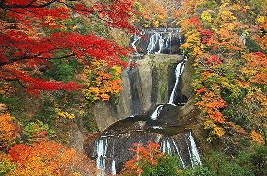 Autumnal Fukuroda Falls and Ashikaga...