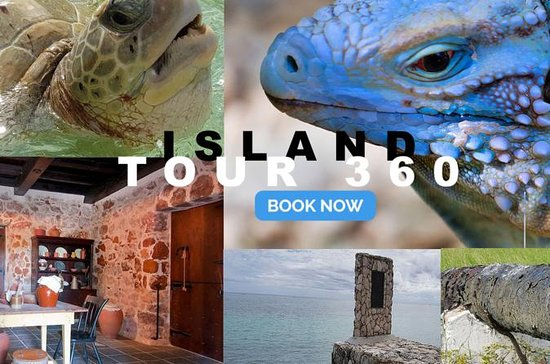 Island 360 Tour de Grand Cayman