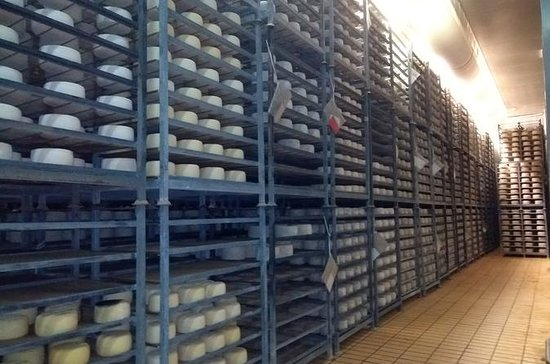 Cheese Tasting Tour from Cagliari
