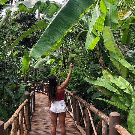 Marina Phuket Resort: photo2.jpg