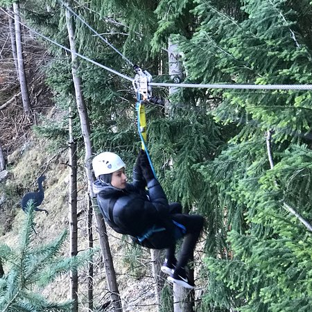 Ziptrek Ecotours: photo2.jpg