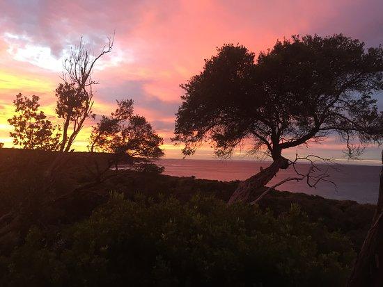 Bilde fra Cape Paterson