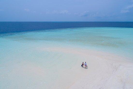 Jumeirah Vittaveli : Sandbank Snorkeling