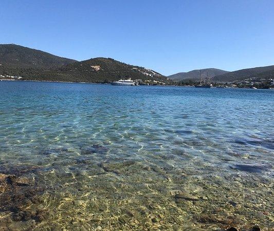 Torba Plajı