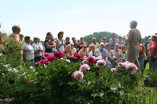 Akershus, Νορβηγία: Hagevandring i solskinn