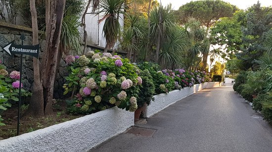 Foto de Hotel Parco Maria Terme
