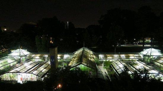 Serres du Jardin botanique de Liège