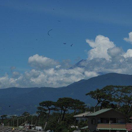 富士山を見る?