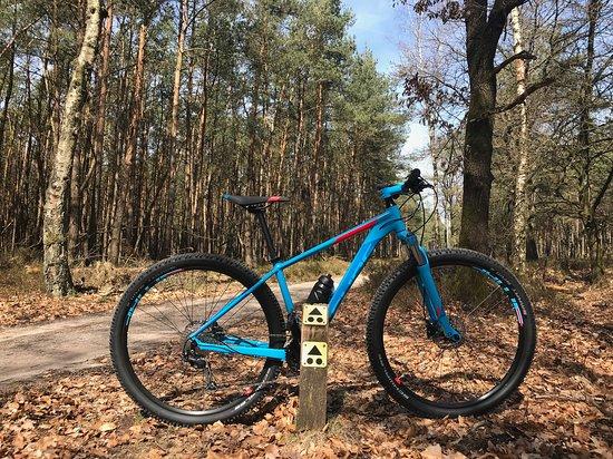 Mountainbike Experience Arnhem