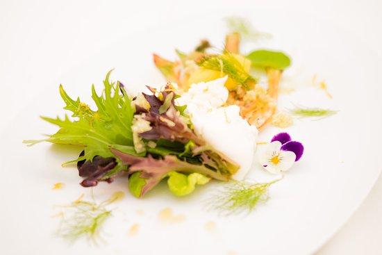 Parsberg, Germany: Burrata, Fenchel, Zitrone, Salat, Kräuter