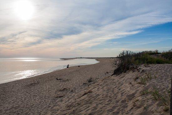 Race Point Beach Photo