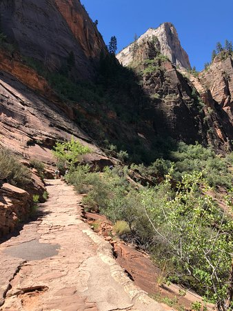 Canyon Overlook Trail: The non-scary part