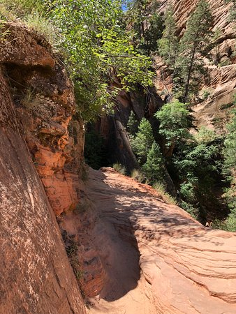 Canyon Overlook Trail: Got scary from this point on