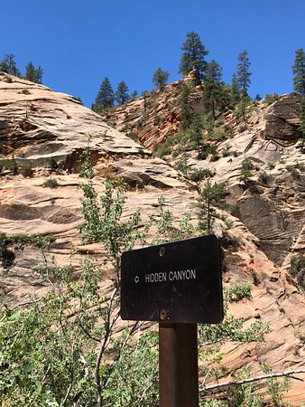 Canyon Overlook Trail: My stopping point - see the hikers holding the chain?
